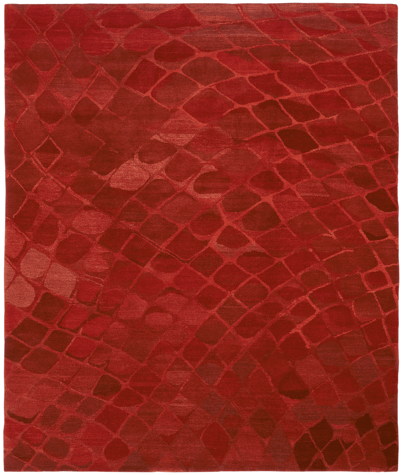 Picture of a Snake rug